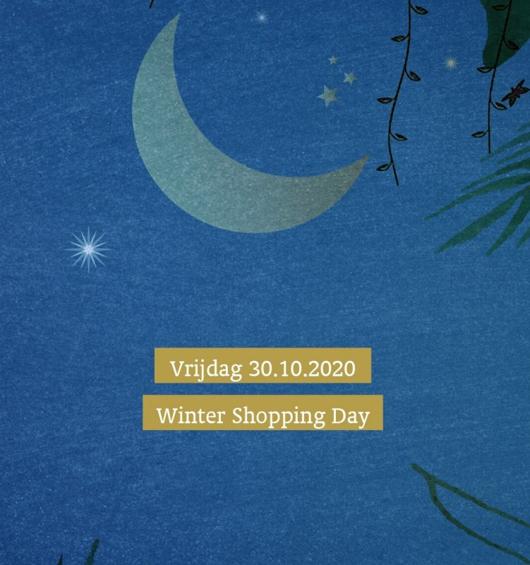 Winter Shopping Day